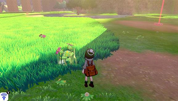 pokemon-schwert-schild-naturzone-aura