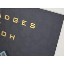 pokecen-sinnoh-badges-2