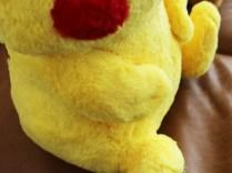 pokecen-fluffy-pikachu-eevee-photo-5