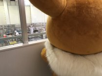 project-eevee-visits-company-marufuku-11