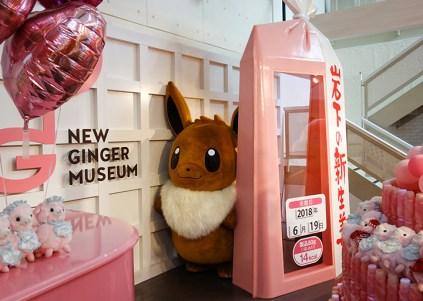 pokemon-new-ginger-museum-visit-12