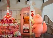 pokemon-new-ginger-museum-visit-13