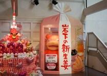pokemon-new-ginger-museum-visit-14