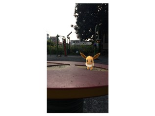 tpc-pokemon-everyday-pikavee-campaign-2018-5