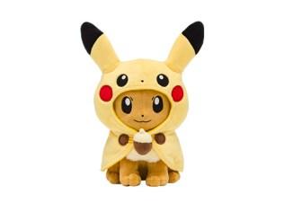 pokecen-fan-of-pikachu-and-eevee-3