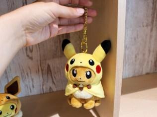 pokecen-pikachu-eevee-fanclub-photo-4