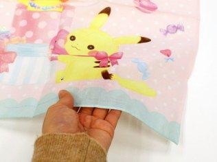 pokecen-fluffy-little-pokemon-jan192019-photo-10