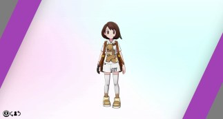 pokemon-sword-shield-expansion-pass-the-isle-of-armor-p22_04