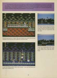 Game Player's Strategy Guide to Nintendo Games Issue 2 Pg. 040