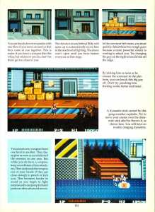 Game Player's Encyclopedia of Nintendo Games page 103