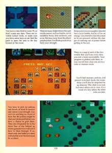 Game Player's Encyclopedia of Nintendo Games page 120