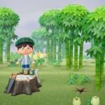 Animal Crossing weather