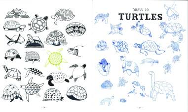 turtles ok