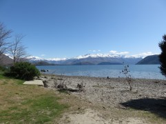 Sur les abords du Lake Wanaka.