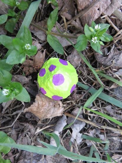 A Wanaka on peut trouver d'étranges champignons.