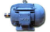 ngef motor