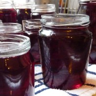 redcurrant jelly jars 4B