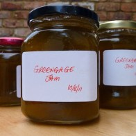 nip it in the bud_10-8-11 - greengage jams