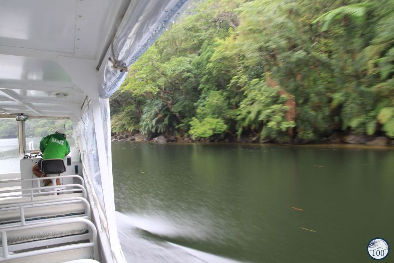 Cruise on Urauchi river
