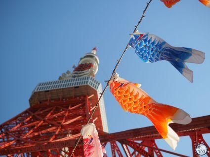 Tokyo tower koinobori