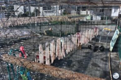 Sakitsu - du poisson qui sèche