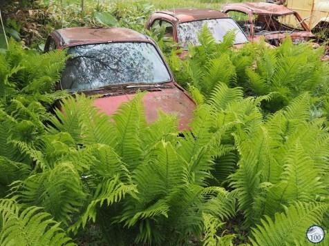 Abashiri, voiture abandonnée