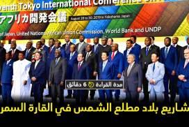 العلاقات اليابانية الإفريقية نموذج للتنمية في العلاقات الدولية