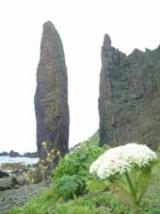 元地海岸 地蔵岩