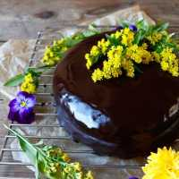 Lemon Chocolate Easter Cake (gluten-free & vegan)