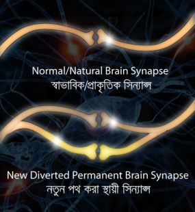 New brain synapse transferring mass data, by nishachor.com