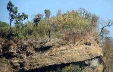পাথর পরেছে মুকুট (ছবি: লেখক)