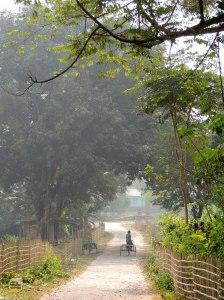 বাংলোর গাড়ি-চলা পথটা অপূর্ব (ছবি: লেখক)
