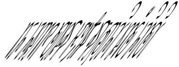 yin-yang-mirrored-text-nishachor