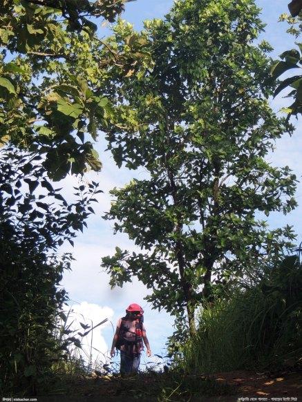 জুরভারং পাড়া থেকে অনতিদূরে - ছবিতে মোহনকে দেখা যাচ্ছে