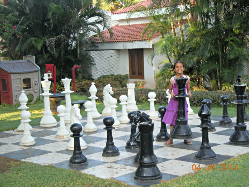 Isn't this chessboard super-duper awesome?  I wish the chess pieces were a little more exotic though