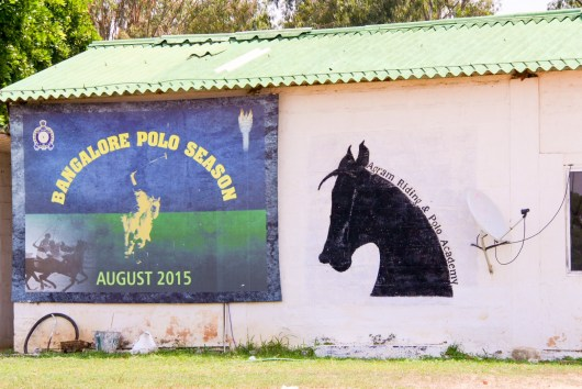 The horse-riding school