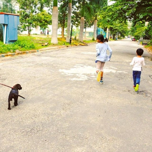 Walking the dog and the kids