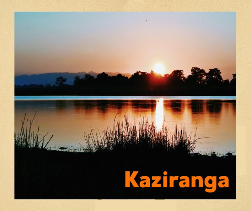 Sunset at Kaziranga