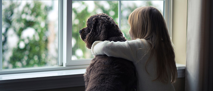 If You Have Ever Lost Your Pet, This is a Cause to Support