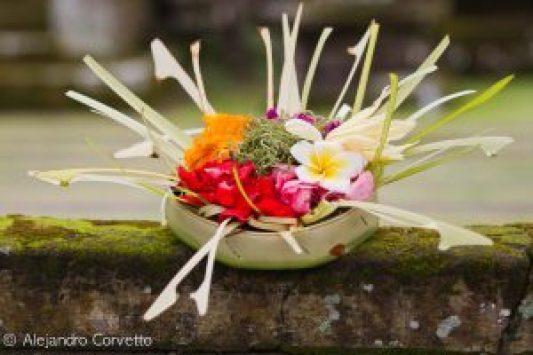 Ofrenda Balinesa