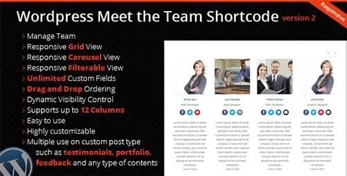 CodeCanyon - WordPress Meet the Team Shortcode Plugin v2.1.1