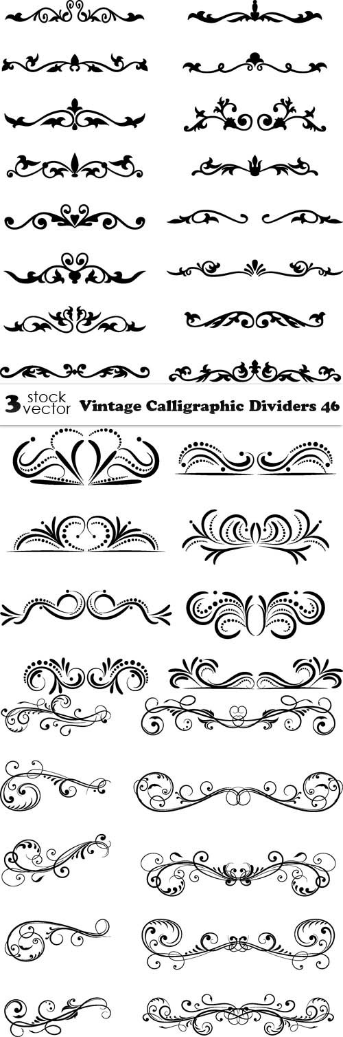Vectors - Vintage Calligraphic Dividers 46