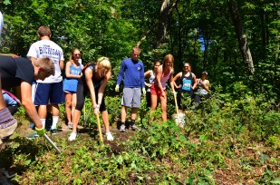 Removing undergrowth at Little Flat Overlook
