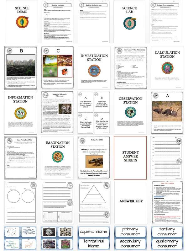 1473647459 demoPreviewPriciplesofEcology Page 4 - PRINCIPLES OF ECOLOGY - Demo, Lab and Science Stations