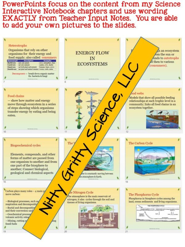 2302341 Page 5 - Principles of Ecology: Life Science PowerPoint, Notes and Test ~ EDITABLE!