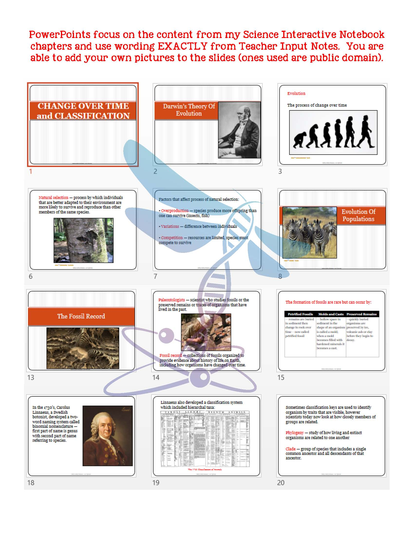 Change Over Time & Classification: Life Science Notes, PowerPoint &  Test~EDITABLE