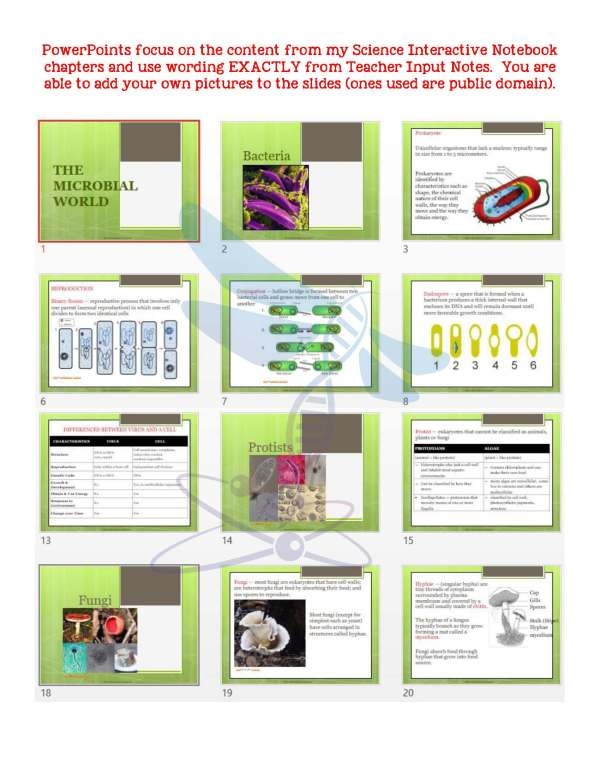 2369931 Page 5 - The Microbial World: Life Science Notes, PowerPoint & Test ~ EDITABLE