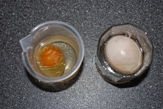 DSC 0350+(2) - Eggmosis - Teaching Selectively Permeable Membranes with Eggs
