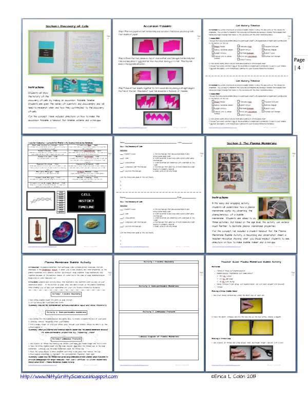 Demo Cell Structure and Function Page 4 - Cell Structure and Function