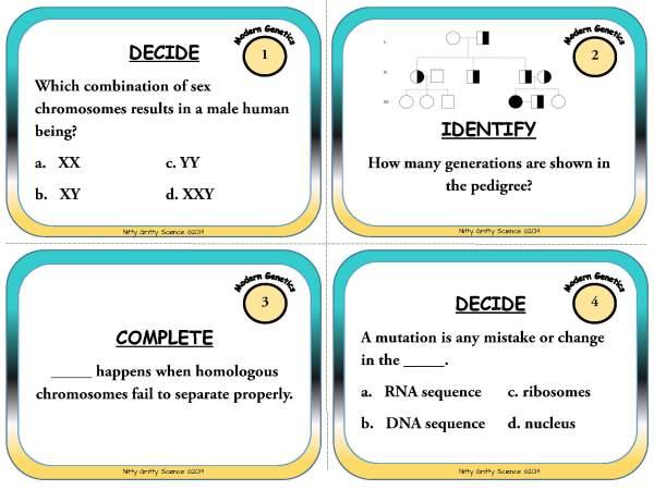 Modern Genetics Page 03 - Modern Genetics - Life Science Task Cards